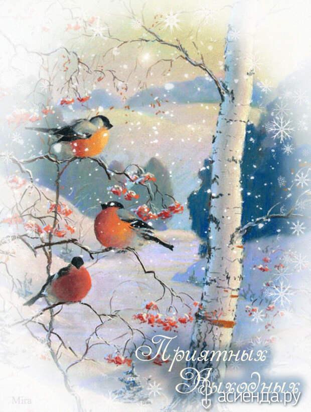 Народный календарь. Дневник погоды 16 января 2021 года