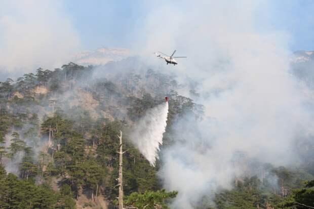 В Ялте авиация продолжила тушение лесного пожара