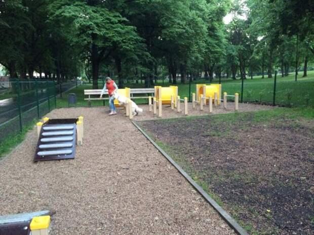 В Головинском проверили санитарное состояние площадок для выгула собак