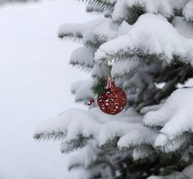 """Калужский губернатор пообещал сделать новогоднее поздравление не хуже """"Уральских пельменей"""""""
