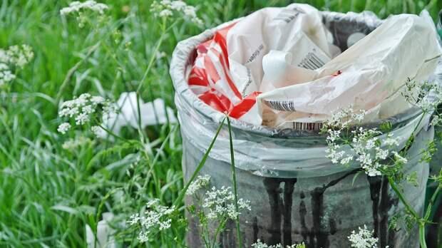 В парке «Кузьминки» провели уборку случайного мусора – Департамент природопользования