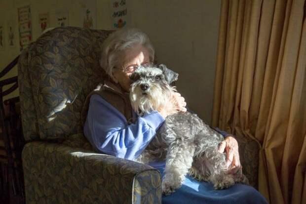 Наша бабушка была против собаки. Но мы её обхитрили!