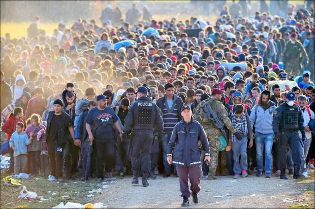 Идеология важней безопасности: Брюссель отвергает план России по спасению Европы от беженцев