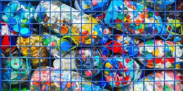 В ЮВАО пройдет экологическая акция по раздельному сбору мусора