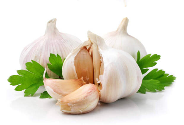 http://zdravnica.net/images/articles/health-nutririon/garlic.jpg