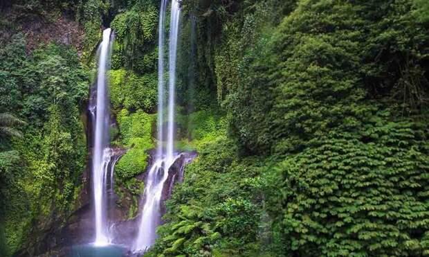 Лучшие водопады Бали: описание, фото, как добраться?