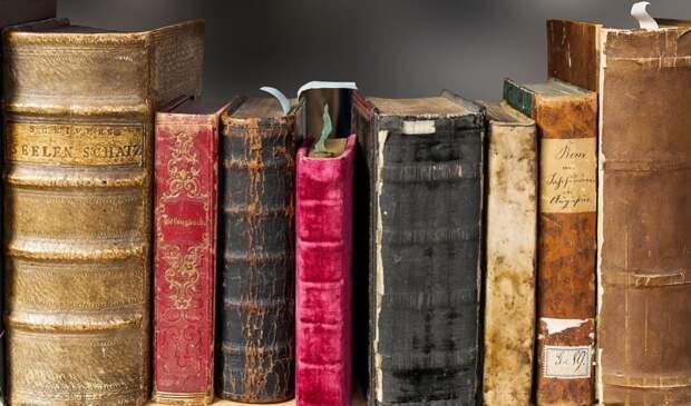 Библиотека №119 представила онлайн-экскурсию по Лефортово