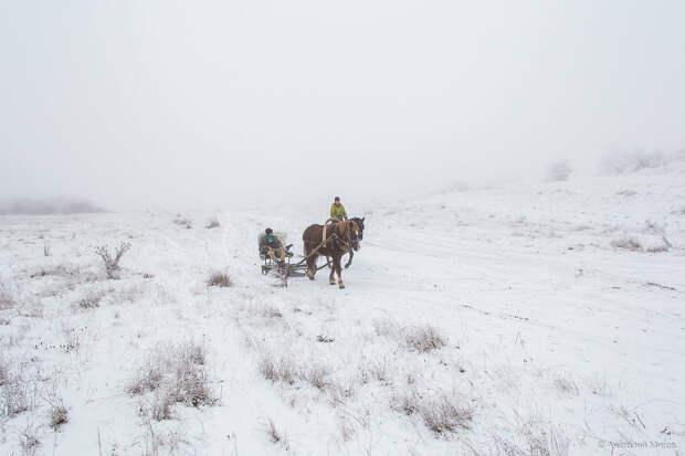 На фото: зимний день в окрестностях Старого Крыма.
