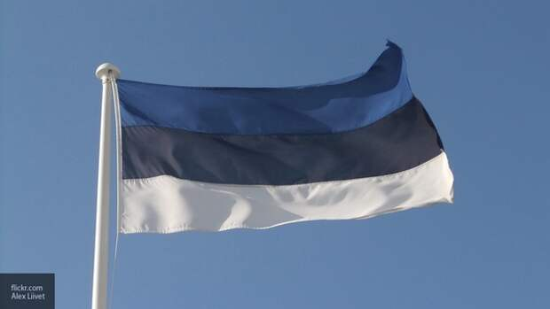 Историк напомнил Таллину о том, что территория Эстонии принадлежит РФ