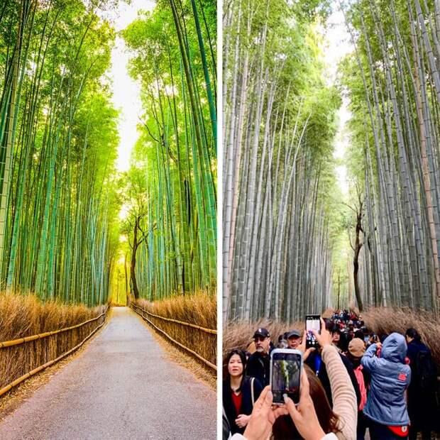 18 путешественников, которые хотели сделать крутое фото, но что-то пошло не так