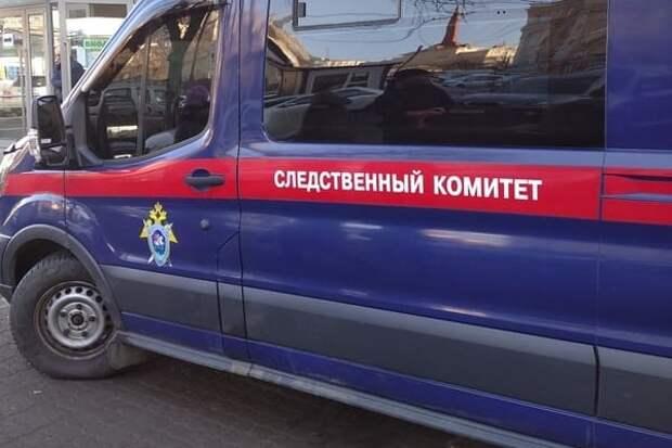 В России сожитель няни по ошибке зарезал младенца