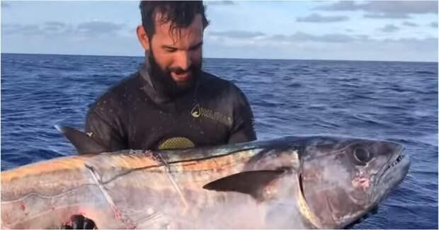 Подводному рыбаку пришлось побороться с голодными акулами за свой улов