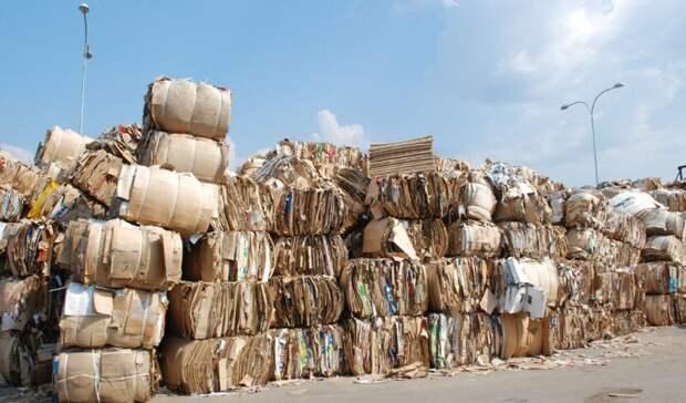 Группа предприятий «ПЦБК» переработала 300 000 тонн макулатуры за 2020 год