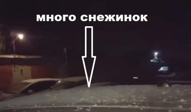 «Анавалило-то»: снежное видео «капитана очевидности» рассмешило приморцев