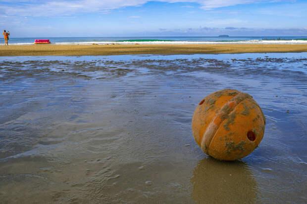 Найдена причина изменения цвета океана на Камчатке