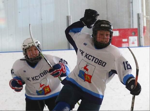 ВГородецком районе состоятся финальные игры хоккейного турнира «Золотая шайба»