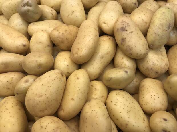 Более 3 600 тонн картофеля экспортировали из Удмуртии в 2020 году