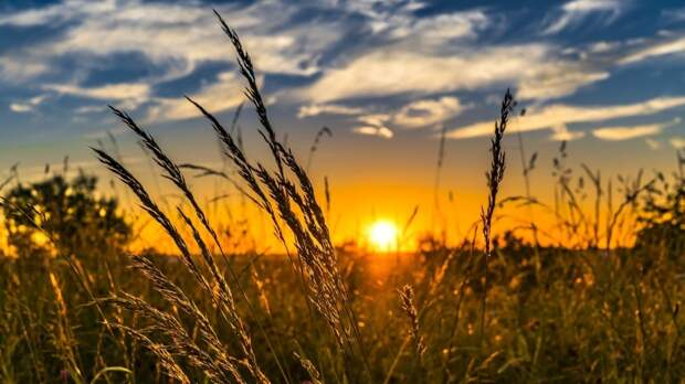 Гидрометцентр спрогнозировал теплое лето в большинстве регионах РФ