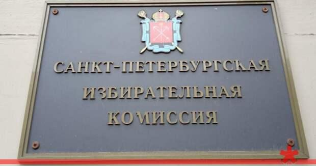 Петербургский избирком хочет отменить муниципальные выборы