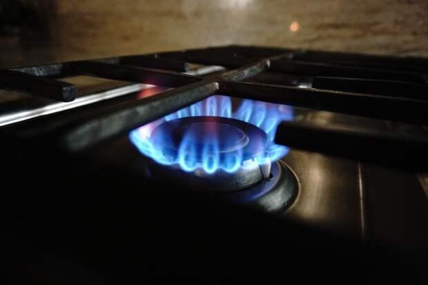 Председатель Госсовета Удмуртии о бесплатном подведении газа к участкам: в год села это будет здорово