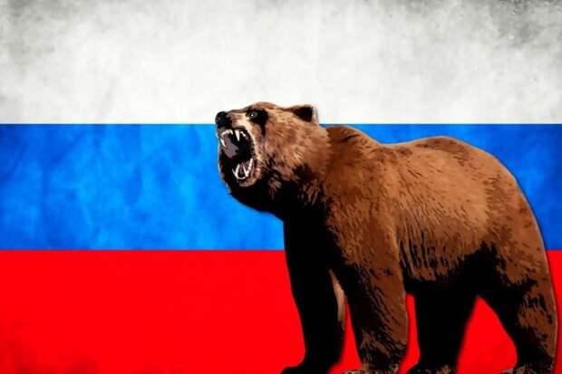 Почему одним из символов России является медведь