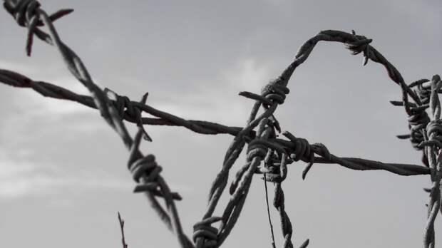 29 сторонников ИГ убили при попытке побега из колонии Таджикистана