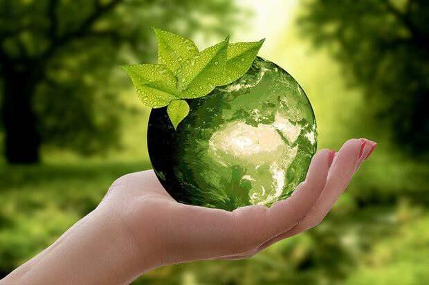 Экология/Фото: pixabay.com