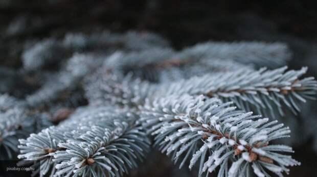 Оксана Федорова будет оценивать конкурс рисунков на новогоднюю тему