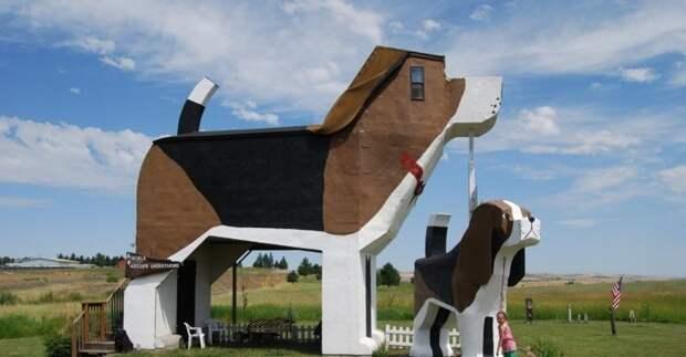 Дом в виде собаки! животные, картинки, прикол, собаки, собачники, фото, юмор