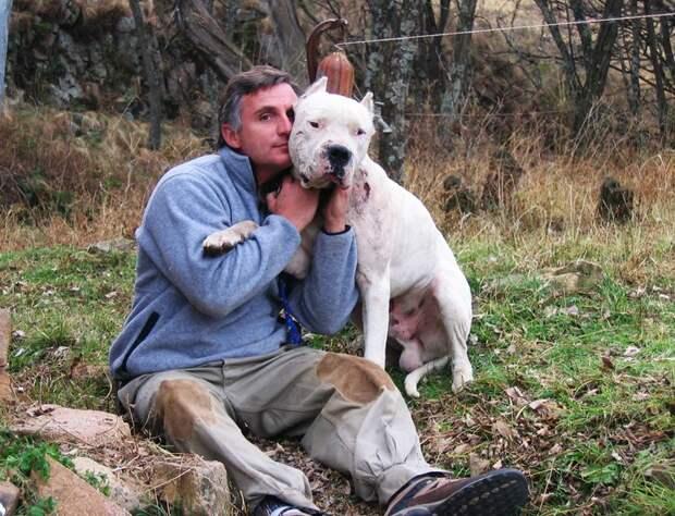 Собака спасла двух детей от пумы