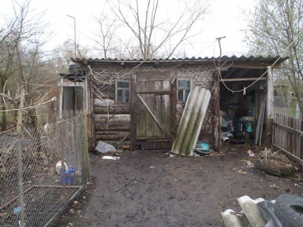В Тамбовской области неизвестный обокрал сарай односельчанина