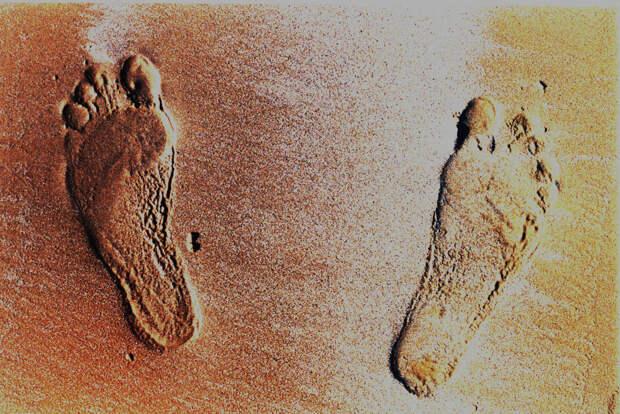 Учёные обнаружили в Северной Америке следы древних людей