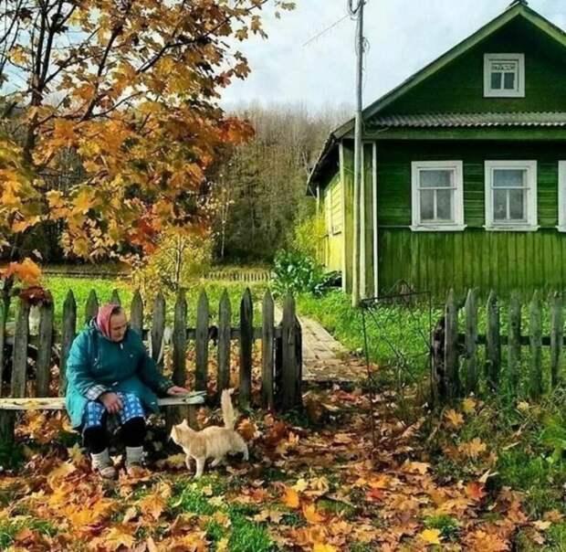 4. Особенно красиво в деревне осенью, когда желтые листья превращают все вокруг в золотистую сказку деревня, детство, ностальгия, русская деревня, фото
