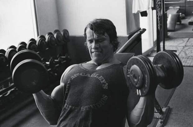 Арнольд Шварцнеггер актеры, бодибилдеры, голливуд, звездные качки, звезды, знаменитости, из спорта в кино, кинематограф