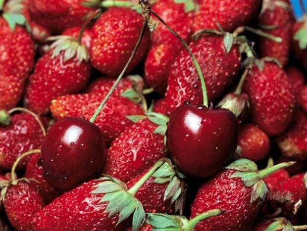 Полезные ягоды: клубника пробуждает чувства, а крыжовник укрепляет стенки сосудов