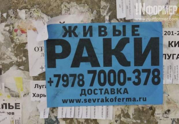 Горожане и Севастополь. Что и кому позволено?