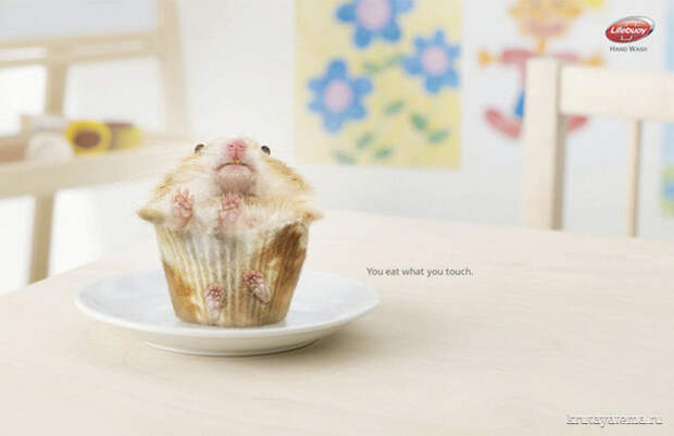 Lifebuoy: You eat what you touch