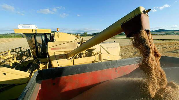 Безопасность превыше всего: Иностранцам нет места на нашем зерновом рынке