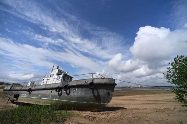 А если Волга совсем пересохнет? Почему мелеют крупнейшие российские реки