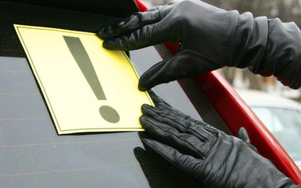 12 советов новичку: как получить права и начать водить машину