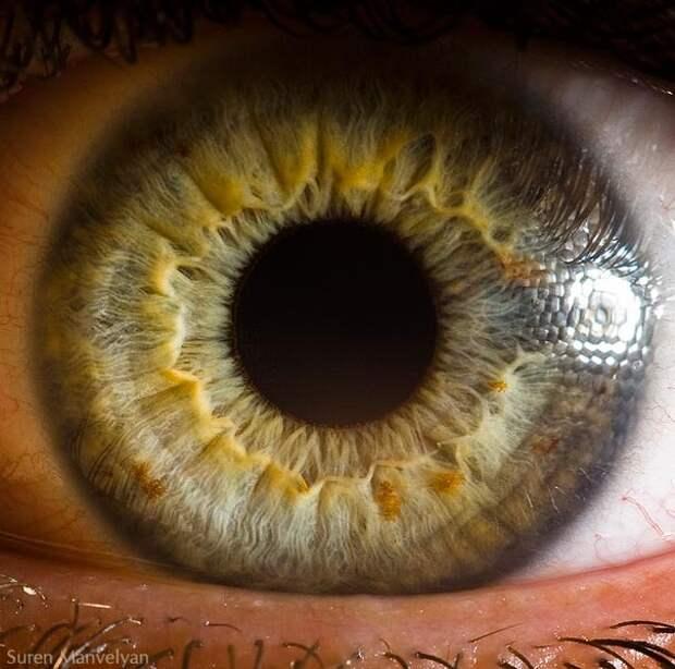eye-macro-photo-5