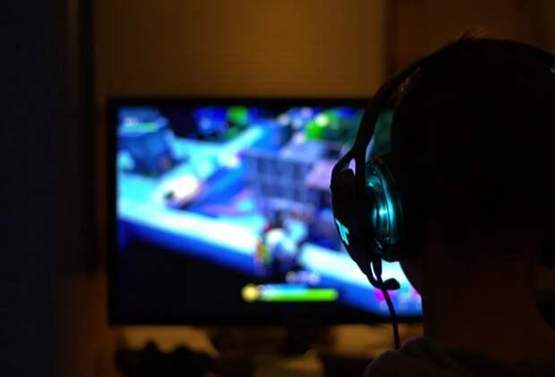 Житель Сокола помог сыну собрать команду для компьютерной игры. Фото с сайта pixabay.com