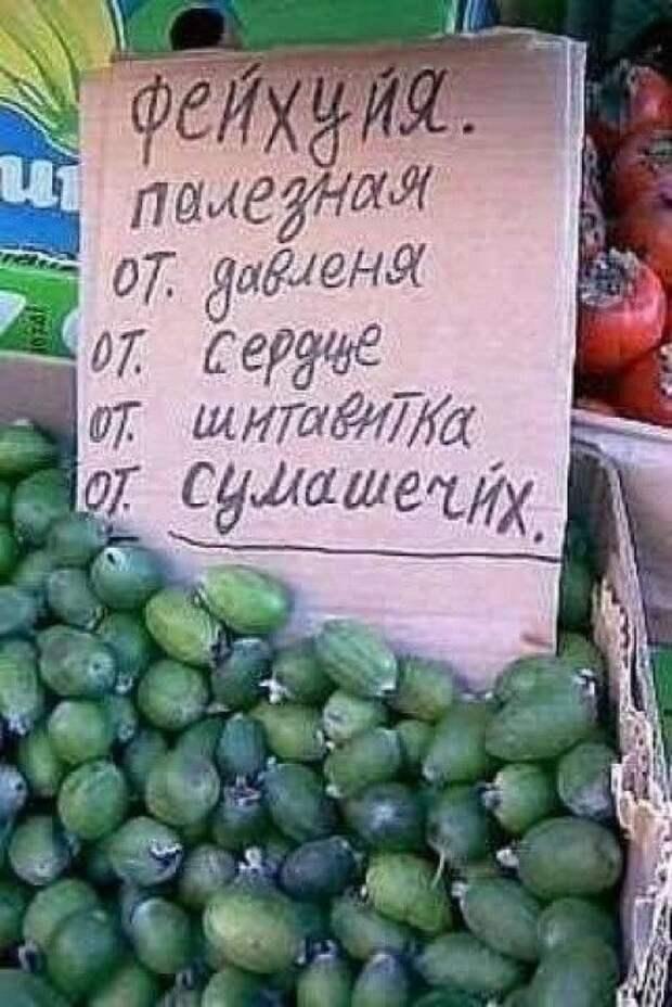 фейхоа: