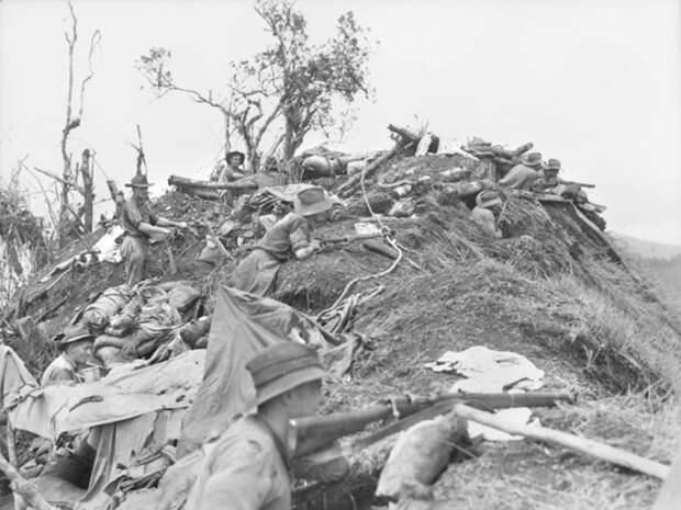 Отбитая у японцев позиция на вершине Лохматого хребта awm.gov.au - «Адский остров»: трагедия 18-й японской армии | Военно-исторический портал Warspot.ru
