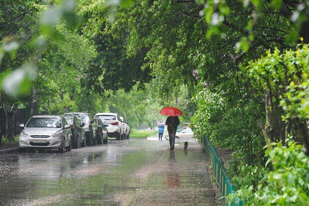 Синоптик рассказала о погоде в Москве на майские праздники