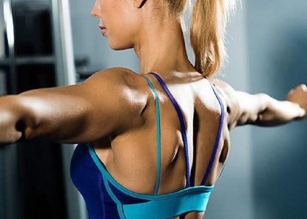 Красивая спина добавит уверенности в себе
