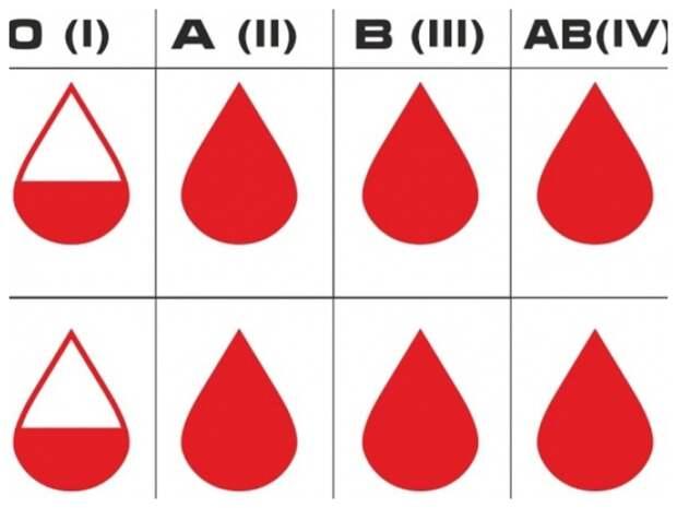 Врач рассказал, люди с какой группой кровью не заражаются COVID-19