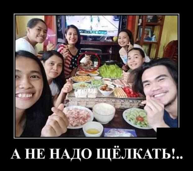 Демотиватор про большую семью