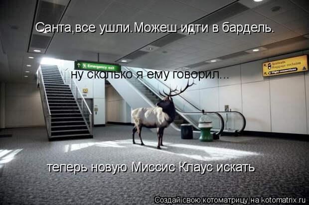 kotomatritsa_AR (640x426, 147Kb)