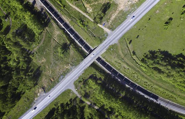 Дума разрешила сплошную вырубку леса на Байкале ради БАМа
